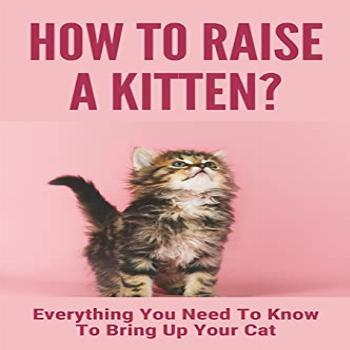 How To Raise A Kitten?: Everything You Need To Know To Bring