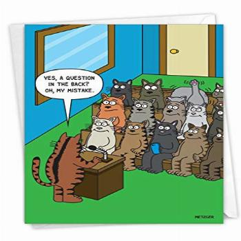 NobleWorks - 1 Funny Animal Card for Birthdays - Pet Cat and