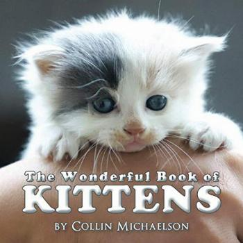 The Wonderful Book of Kittens.: A delightful picture book of